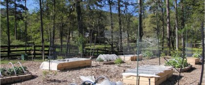 Crowdfunding - <strong>Outdoor Classroom & Orchard Enhancements for BCEMS</strong>