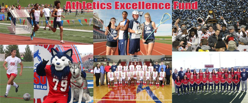 Crowdfunding - Athletics Excellence Fund